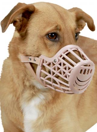 Plastic muzzle - 1