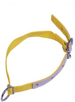 Collare nylon e pelle OVINI cm.2,5x60 - 1