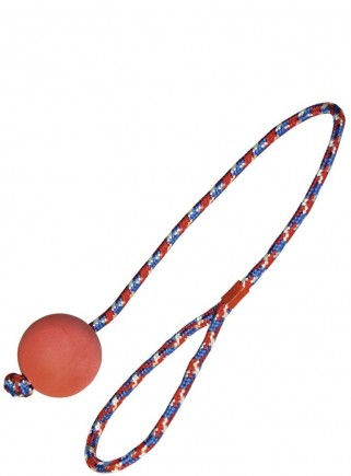 Ball game with rope